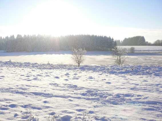 Neige et étang à Frasne (Doubs)